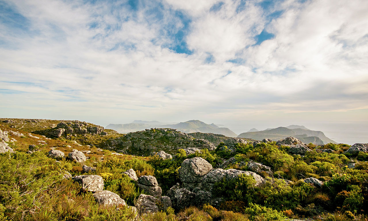 table-mountain-guided-tour